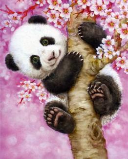 """Картина по номерам """"Очаровательная панда"""" 30*40 см"""